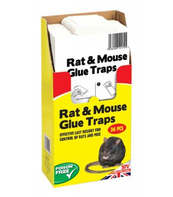 STV The Big Cheese Rat and mouse Glue Trap